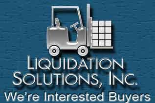 Liquidation Solutions Inc
